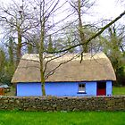 Irish Thatched Hut by gloriart