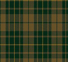 01062 Confederate Cavalry Military Tartan Fabric Print Iphone Case by Detnecs2013