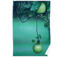 Little Green Apples Poster