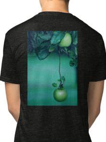 Little Green Apples Tri-blend T-Shirt