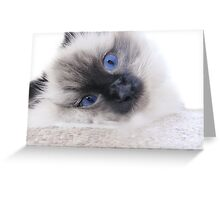 Cute as a button! Greeting Card