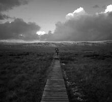 North Yorkshire by Mark Minas