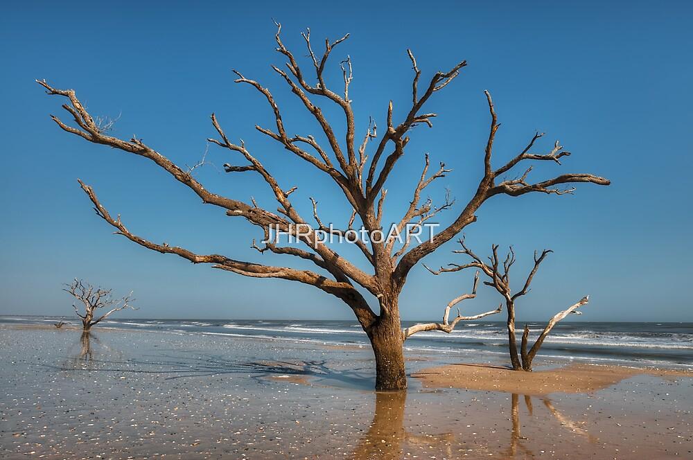 Botany Bay & Edisto Beach by JHRphotoART