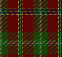 01076 Connemara District Tartan Fabric Print Iphone Case by Detnecs2013