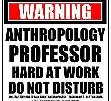 Warning Anthropology Professor Hard At Work Do Not Disturb by cmmei