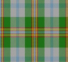 01086 Cooper-Couper Dress (Dalgleish #2) Clan/Family Tartan Fabric Print Iphone Case by Detnecs2013