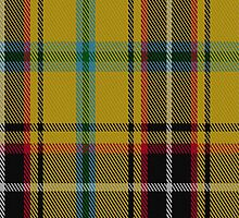 01091 Cornish Christophers Tartan Fabric Print Iphone Case by Detnecs2013