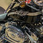 2003 Harley Hugger by Bill Spengler
