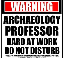 Warning Archaeology Professor Hard At Work Do Not Disturb by cmmei