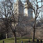 San Remo from Central Park by joan warburton