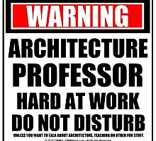Warning Architecture Professor Hard At Work Do Not Disturb by cmmei