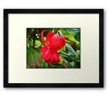 Firetruck Red - Fuchsia Framed Print