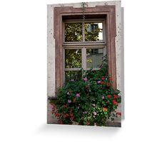 Window Box Reflections Greeting Card