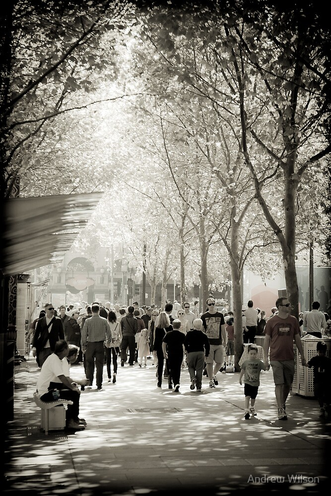 Streets of Melbourne by Andrew Wilson