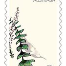 Stamp series: Native frond by drunkonwater