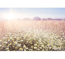 Sunshine over the Fields Photographic Print