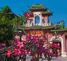 Vietnam. Hoi An. Assembly Hall of the Fujian Chinese Congregation. by vadim19