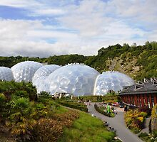 The Eden Project by Ralph Goldsmith