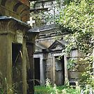 Highgate Cemetery within the Circle of Lebanon by himmstudios
