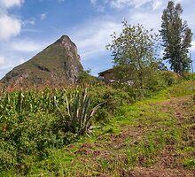 Cojitambo, Ecuador by Paul Wolf