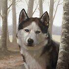 Siberian Husky by John Silver