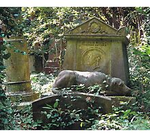 Highgate Cemetery the Chief Mourner Photographic Print