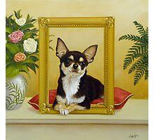 Chihuahua V - Mona Lisa Photographic Print