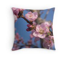 Peach Blossom Beauty Throw Pillow