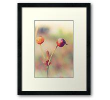 misty plants Framed Print