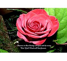 God's Word Will Last Forever Photographic Print