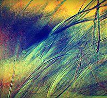 Blowin' in The Wind by MacroXscape