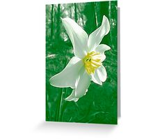 Flower Painting Greeting Card