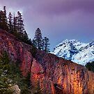 Spring Mountain Glow by camfischer