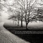 Morning Mist (quote version) by torib