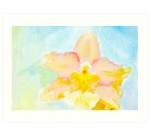 Tropical Sunkiss Orchid Art Print
