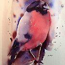 Mr Bullfinch by Karl Fletcher