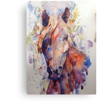 Solomon's horse Canvas Print