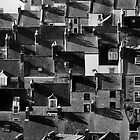 Houses at Chesil Beach, Dorset by Lugburtz