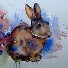 Mr Rabbit by Karl Fletcher