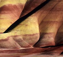 Painted Hills 9 by Bob Christopher