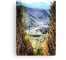 The Mountain's Valley View Canvas Print