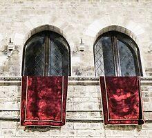 arched windows by Anne Scantlebury
