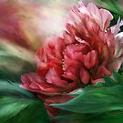 Peony - 50 Shades Of Red by Carol  Cavalaris
