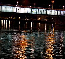 Linz Danube Crossing by phil decocco