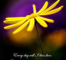 Daisy and Bible Verse by KellyHeaton