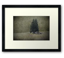 Cabin Under the Tree Framed Print
