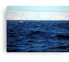 Land Ahoy.  Canvas Print