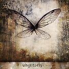 wings to fly by Karin  Taylor