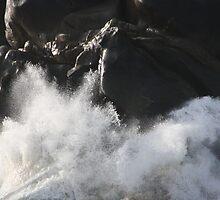 Crashing Tide by dsimon