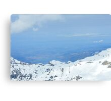 Up High Canvas Print